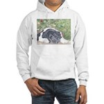 Landseer Newfoundland Hooded Sweatshirt