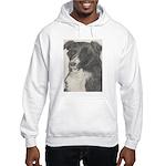 Border Collie Hooded Sweatshirt