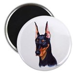 doberman white Magnets