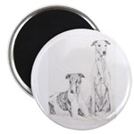 Greyhounds Magnet