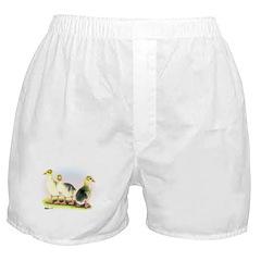 Emden Geese Goslings Boxer Shorts