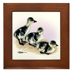 African Geese Goslings Framed Tile