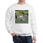 Drift Fishermen Rogue River Sweatshirt