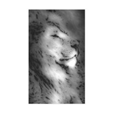 Lion Rectangle Decal