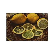Vintage Russian Lemons Rectangle Magnet