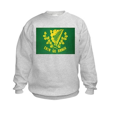 Ireland Green Flag Kids Sweatshirt