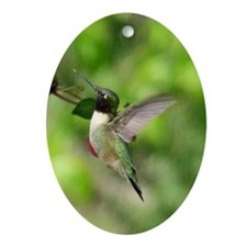 Black-chinned HB Ornament (Oval)