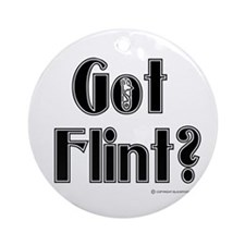 Got Flint? Ornament (Round)
