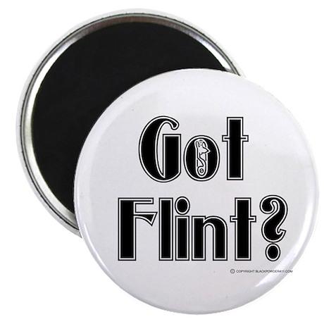 Got Flint? Magnet
