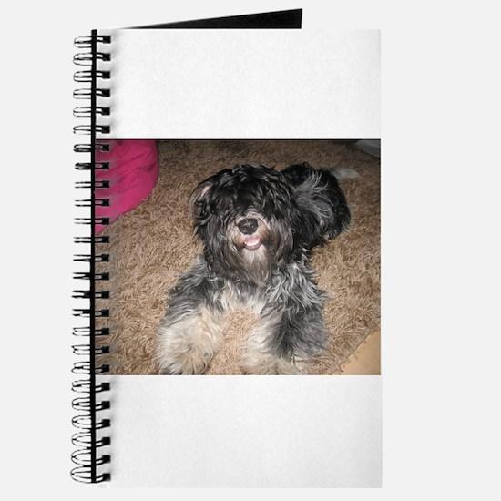 Cute Schapendoes Journal