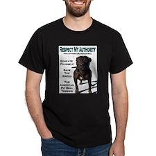 """Respect"" Black T-Shirt"