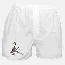 Funny Ninja Boxer Shorts