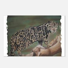 Clouded Leopard Pastel Drawing Postcards (Package