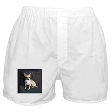 Fawn Boxer Shorts