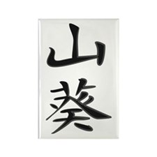 Wasabi - Kanji Symbol Rectangle Magnet