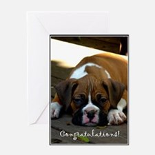 Congratulations Boxer Dog Greeting Card