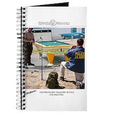 Pool Cue Journal