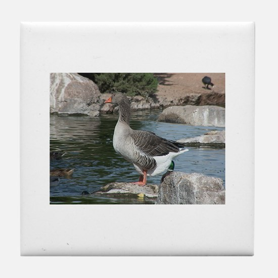 WILDLIFE Tile Coaster