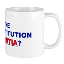 U.S. Constitution Missing? Drink Mug