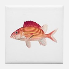 Red Fish Tile Coaster