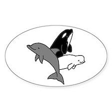 Cetacean Trio Bumper Decal