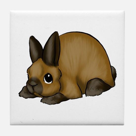 Tort Mini Rex Tile Coaster