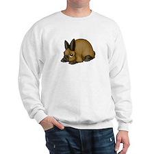 Tort Mini Rex Sweatshirt