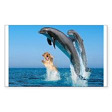 Swimming Rectangle Bumper Stickers