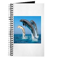 Swimming Cat Journal