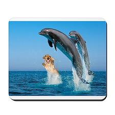 Swimming Mousepad