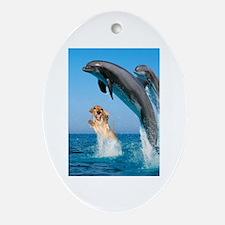 Swimming Oval Ornament