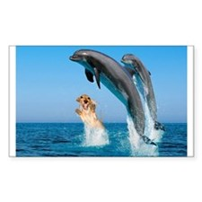 Swimming Rectangle Sticker 10 pk)
