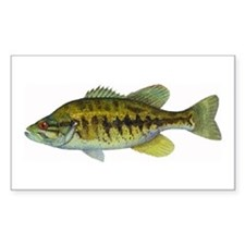 Smallmouth Bass Rectangle Decal