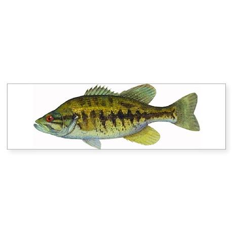 Smallmouth Bass Bumper Sticker