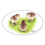 Silver Grey Dorking Chicks Oval Sticker