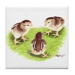 Silver Grey Dorking Chicks Tile Coaster