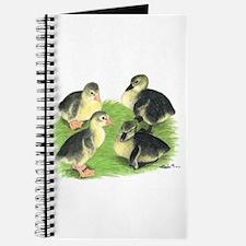 Pilgrim Goose Goslings Journal