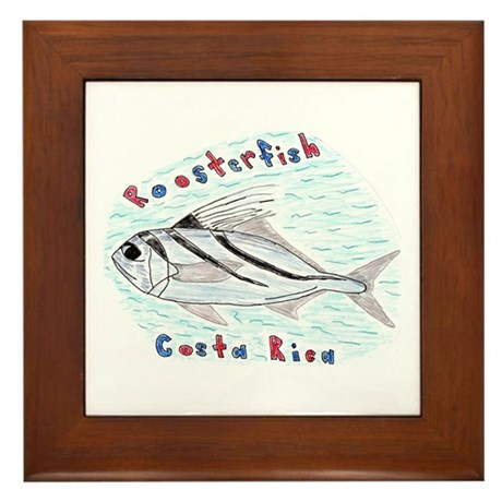 Roosterfish Framed Tile