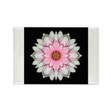 Pink and White Dahlia I Rectangle Magnet
