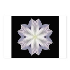 Clematis I Postcards (Package of 8)