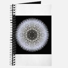 Dandelion Head I Journal