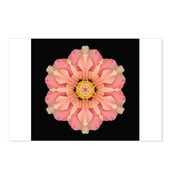 Hibiscus Rosa-sinensus I Postcards (Package of 8)