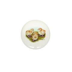 Cornish White-laced Red Chick Mini Button (100 pac
