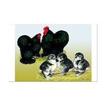 Black Cochin Family Mini Poster Print