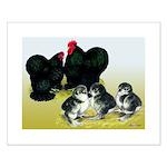 Black Cochin Family Small Poster