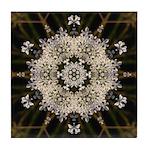 Queen Annes Lace I Tile Coaster