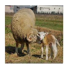 Ewe with Lamb Tile Coaster