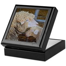 Stomper and Lamb Keepsake Box