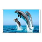 Doxie & Dolphins Rectangle Sticker