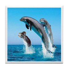 Doxie & Dolphins Tile Coaster